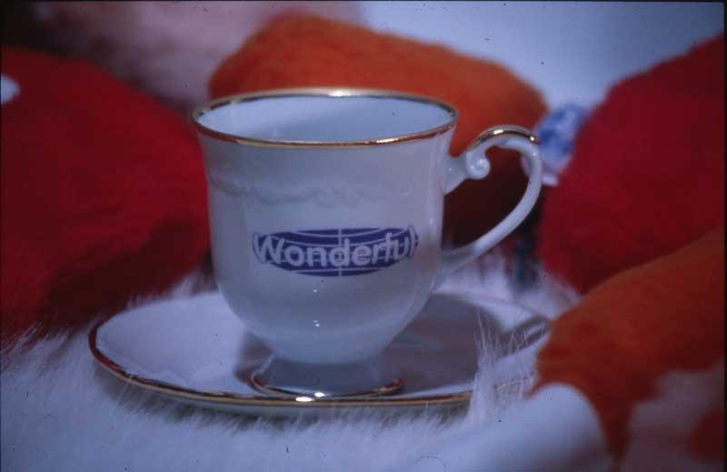 wonderful_cup_1994.jpg